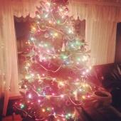 Day 72 - Christmas!